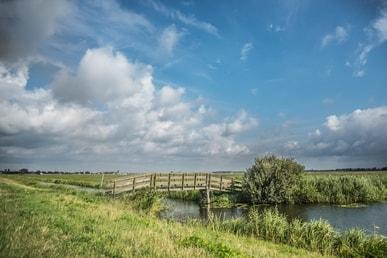 geregistreerd partnerschap vieren in Friesland